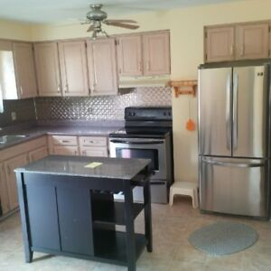 Rooms for Rent Near Lambton College - Fully Furnished