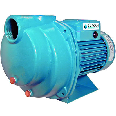 Burcam Pumps 78 Gpm 1-12 Hp Cast Iron Lawn Sprinklerirrigation Pump