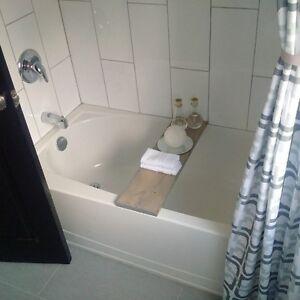 Freshly Renovated Suites Kitchener / Waterloo Kitchener Area image 3