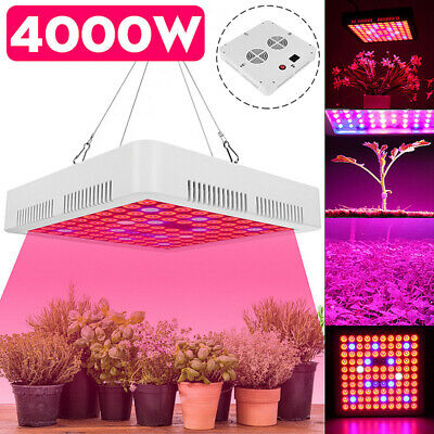 4000W 100LED Grow Light Panel Full Spectrum Plant Lamp Kit IP65 Veg Flower BD$N