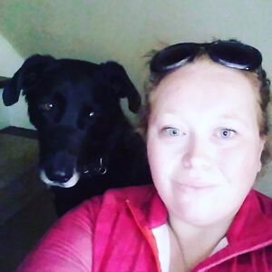 Dog walker/Pet nanny available + friendly & cheap rates Kitchener / Waterloo Kitchener Area image 3