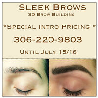 Sleek Brows *Special Intro Pricing*