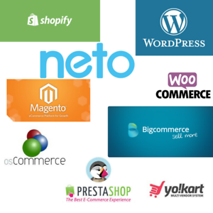 eCommerce Experts | Get your Stunning Website within Budget