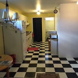 5 Month Rental- 1 bedroom basement suite-furnished
