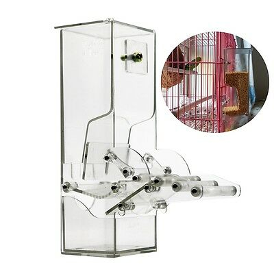 Acrylic Bird Feeder No Mess Automatic Seed Feeder Cage Parrot Canary Cockatiel
