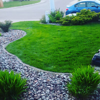 Property Maintenace and Lawn Services