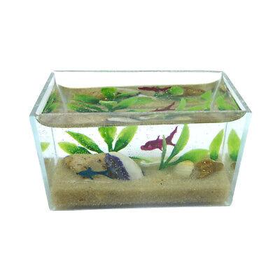 Holzspielwaren-Dresden 39051 kleines Aquarium 1:12 für Puppenhaus NEU!  #