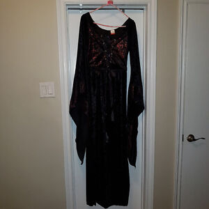 Sexy Adult Witch Costume (Size L)