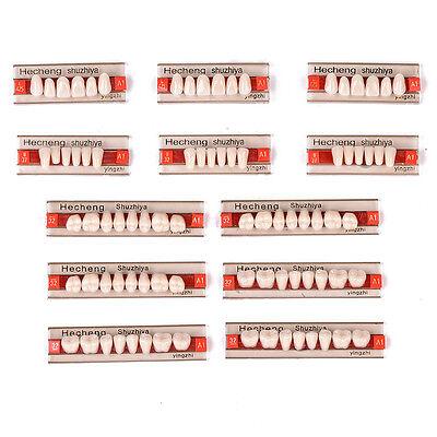 3set84pcs Acrylic Resin Denture Teeth Vita Color A1 Upper Lower Shade Dental