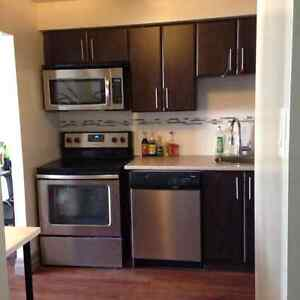 2bedroom apartment for sublet in Belmont , Kitchener Kitchener / Waterloo Kitchener Area image 3