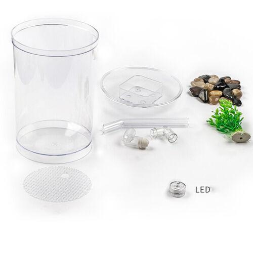 Creative Ecology Mini LED Fish Tank Luminous Glass Tank Aquarium Fish Tank 9