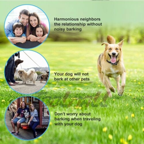 3X Anti Bark No Barking Training Collar Shock Control For Small Medium Large Dog