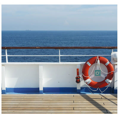 Stand Up Photo Cutouts (CRUISE SHIP Photo Backdrop CARDBOARD CUTOUT Standup Standee Background)