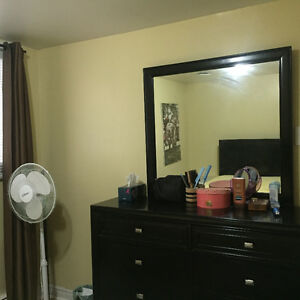 Bright clean, one bedroom fully furnished heat and light incl