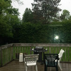 SIX BED ROOM/2 BATHROOM HOME FOR RENT IN PORT HOPE Peterborough Peterborough Area image 10