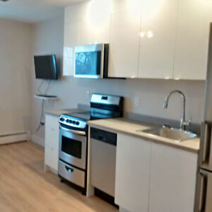 Furnished Bachelor Apartment - Newly Renovated