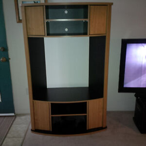 Large TV stand with shelve space and four cabinet doors.