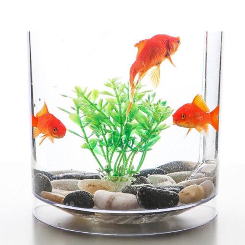 Creative Ecology Mini LED Fish Tank Luminous Glass Tank Aquarium Fish Tank 10