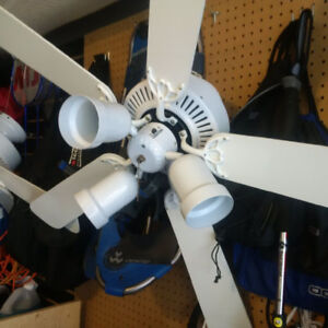 Light and Fans - Great condition