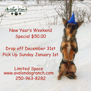 New Year's Weekend Boardiing Special