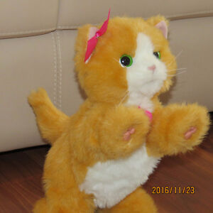 FurReal Friends - Daisy - Plays-With-Me Kitty London Ontario image 1
