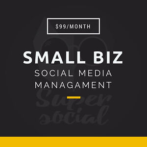 THE BEST SOCIAL MEDIA MANAGEMENT FOR JUST $99/MONTH London Ontario image 1