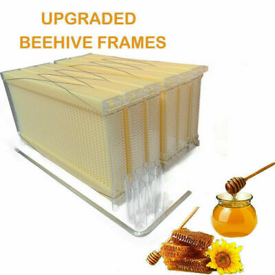 6pcs Upgraded Auto Plastic Honey Beekeeping Beehive Hive Frames W Tubes Hot Usa