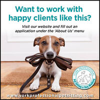 Passionate about pets?