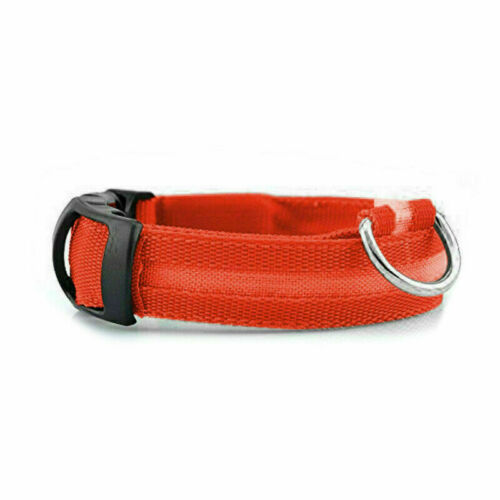 Dog LED Collar Blinking Night Flashing Light Up Glow Adjustable Pets Safety USA