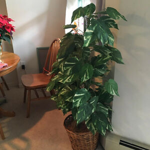 Very Nice Artificial Plant