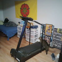 Treadmill - Weslo Cadence 39 - Barely Used, But Need to Downsize