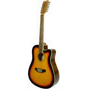 12 STRING ACOUSTIC / ELECTRIC GUITAR