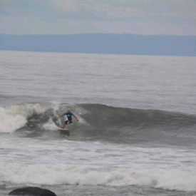 Travel SURF buddy to go for a canaries trip or Morroco.10 days
