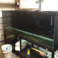 Aquarium 125 gallons with metal stand