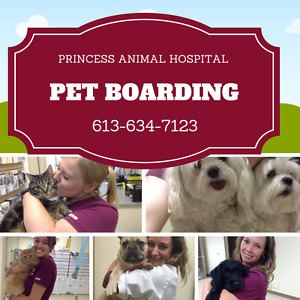 Pet Boarding - Ask us the Benefits of Boarding with us!