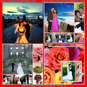 Arches+arbors +flowers+photos-DECORS- 50%off  Weddings+Events