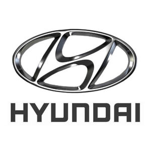 Thousands of New Painted Hyundai Hoods