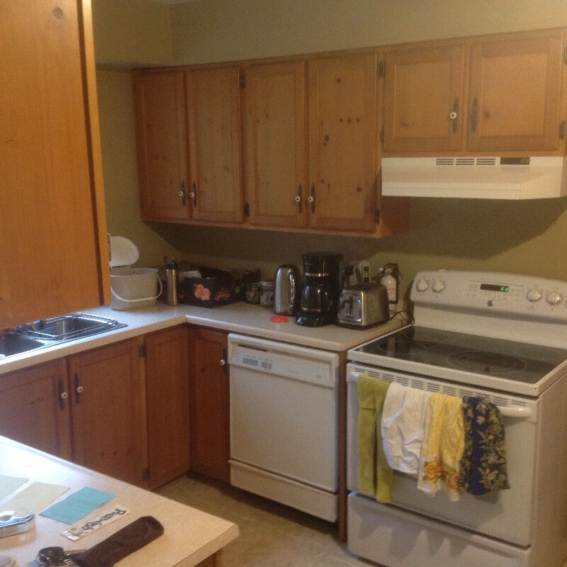 SOLID PINE KITCHEN CABINETS FOR SALE   Cabinets ...