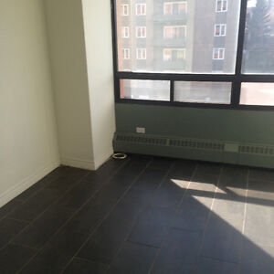Downtown furnished modern bachelor suite