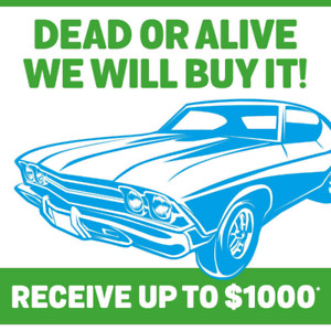Best Price for scrap cars! Call now!