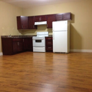 Large NEW 1 Bedroom basement in Misson Hill