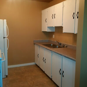 BRIGHT AND SPACIOUS 3 BEDROOM SUITE FOR RENT!!!