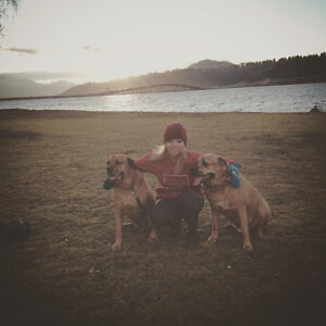 Kelowna Local Home/Pet Sitter