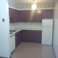 *** SPACIOUS ONE BDRM APARTMENT. GREAT AREA.
