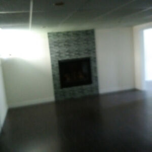 one bedroom apartment south welland