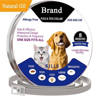 Adjustable Anti Flea and Tick Neck Collar For Dog Cat Pet 8 Months Protection