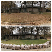 Fall Yard Clean Up, Leaf Removal, Clean Flower Beds, Ect!!