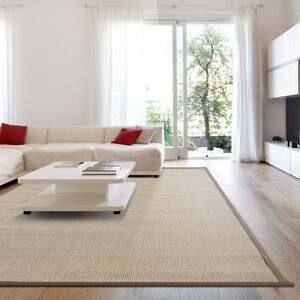Synthetic Sisal Area Rug - Starting at $63.00 !
