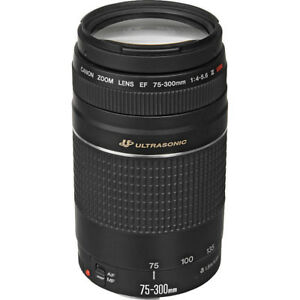 canon 55-250 mm lens telephoto