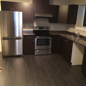 Langley willoughby basement 2 bedroom legal suite for rent